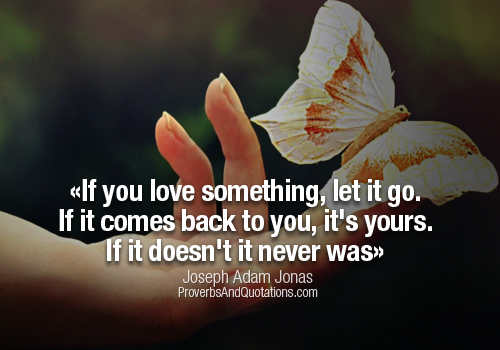If You Love Something Let It Go Quotes